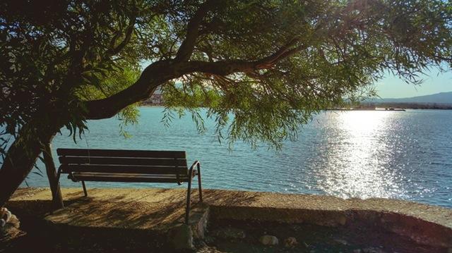 Lake bench 640x359