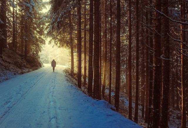 winter-1936638_640